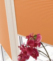 conservatory_blinds5